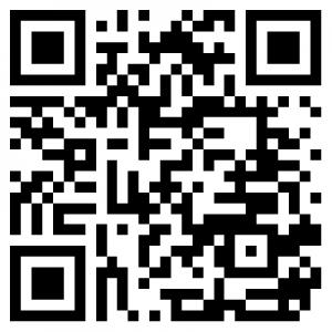 QR Code Rundblick